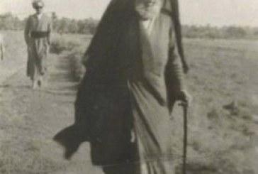 ماجرای سید بحرالعلوم